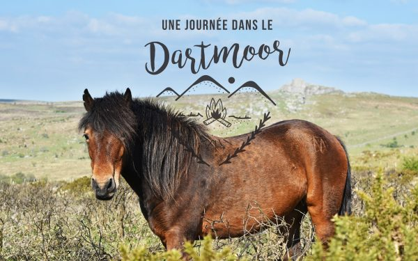 dartmoor que faire